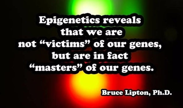 Epigenetics And Migraines: How an archaic view of health, that we are controlled by genes, misunderstands how biology works