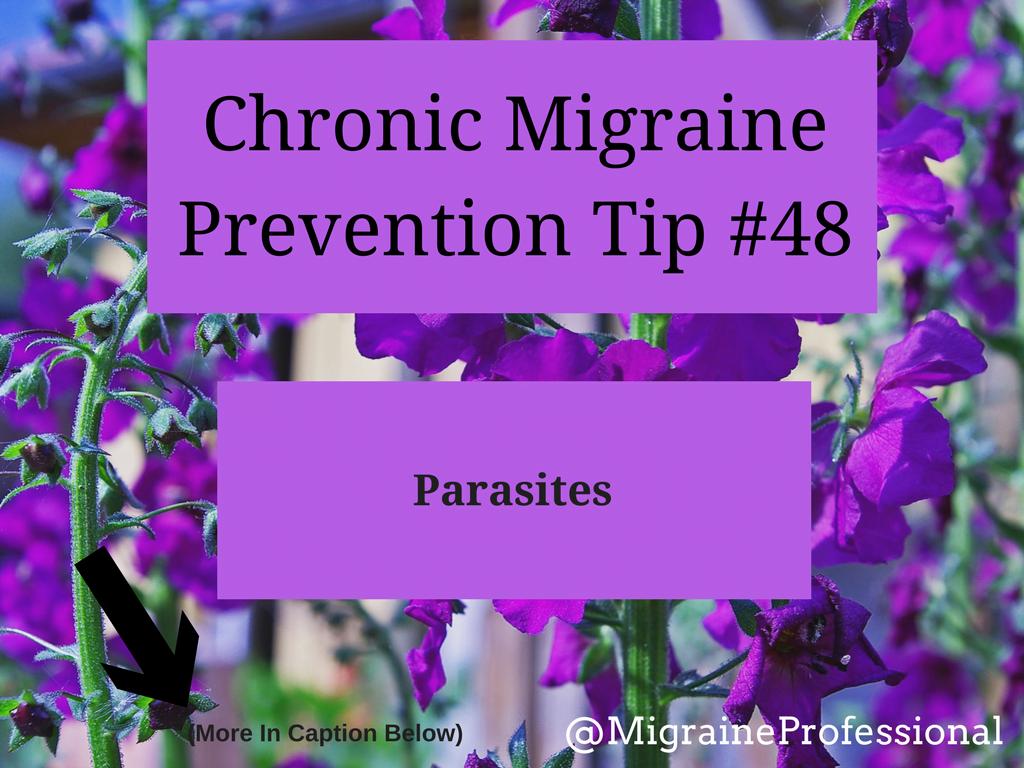 Chronic Migraine Prevention Tip #48 Parasites