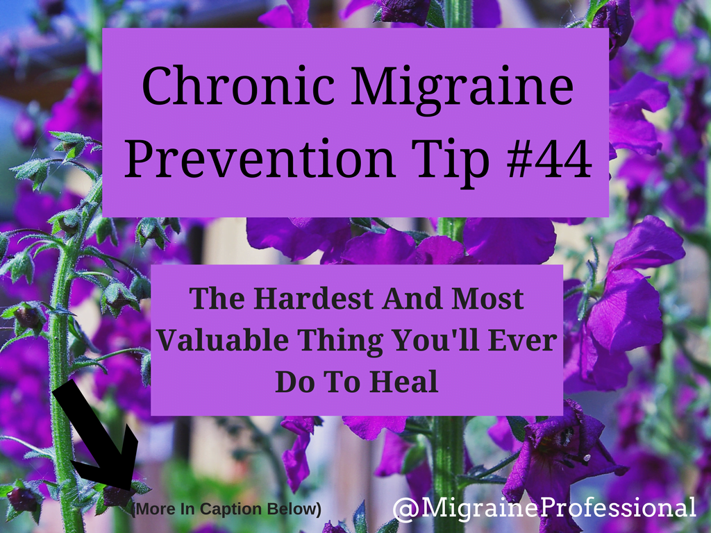 Chronic Migraine Prevention Tip #44