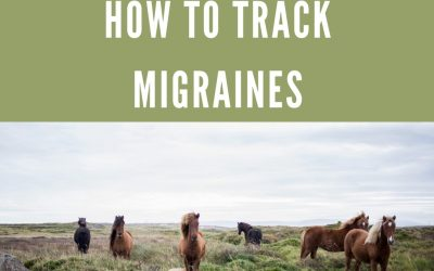 Tracking migraines