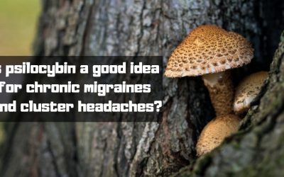 Is psilocybin a good idea for chronic migraines and cluster headaches?