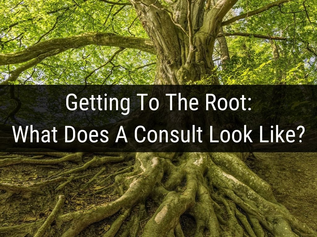 Getting to the root What does a consult look like1 migraines headaches