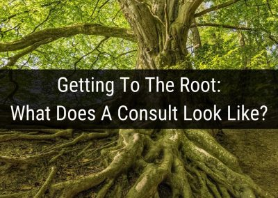 Getting to the root: What does a consult look like?